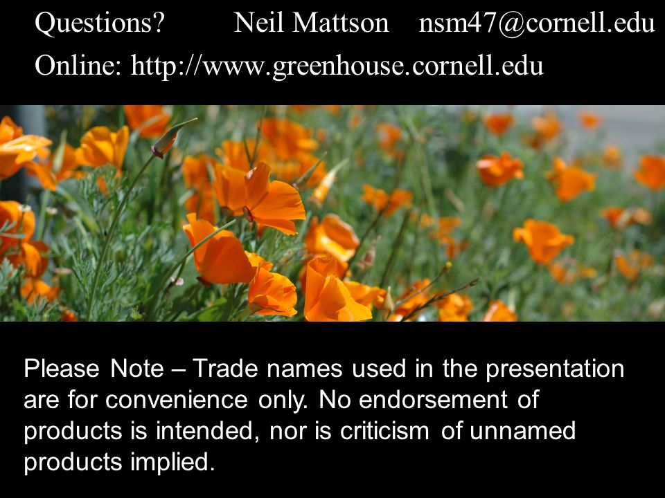 Questions?Neil Mattson nsm47@cornell.edu Online: http://www.greenhouse.cornell.edu Please Note – Trade names used in the presentation are for convenience only.