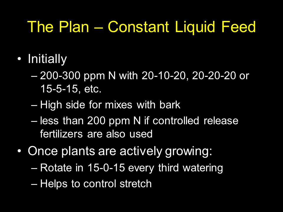 The Plan – Constant Liquid Feed Initially –200-300 ppm N with 20-10-20, 20-20-20 or 15-5-15, etc. –High side for mixes with bark –less than 200 ppm N