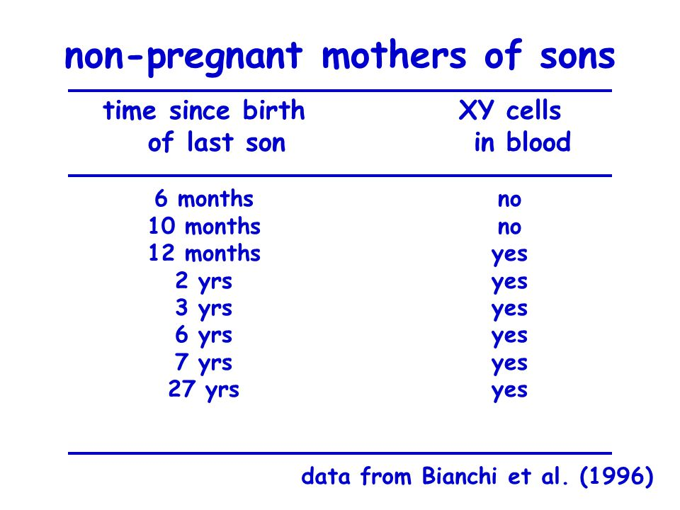 non-pregnant mothers of sons time since birth of last son XY cells in blood data from Bianchi et al. (1996) 6 months 10 months 12 months 2 yrs 3 yrs 6