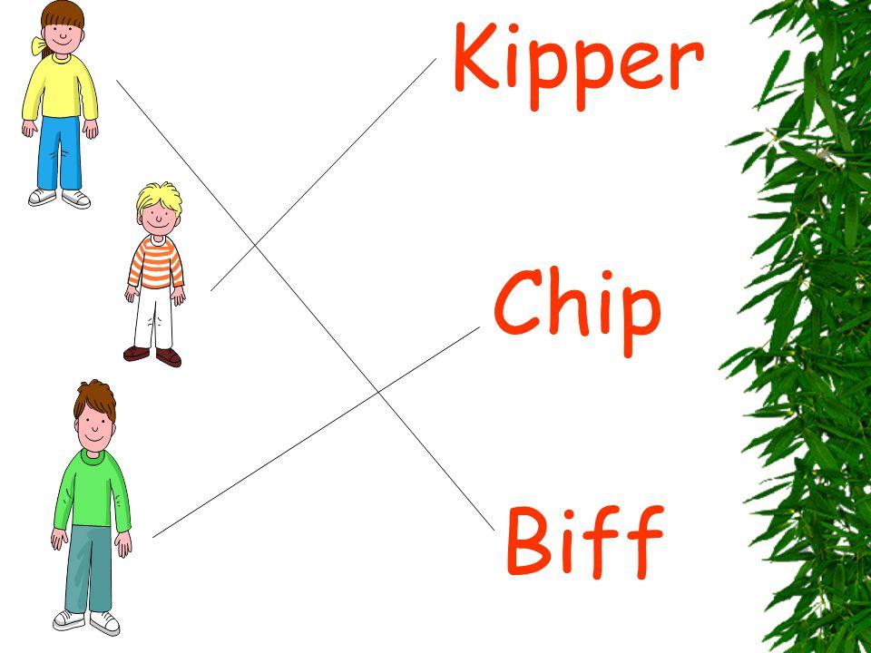 Biff Kipper Chip