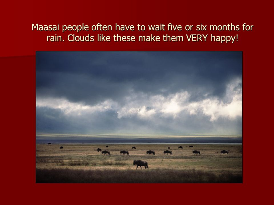 Maasai people often have to wait five or six months for rain.