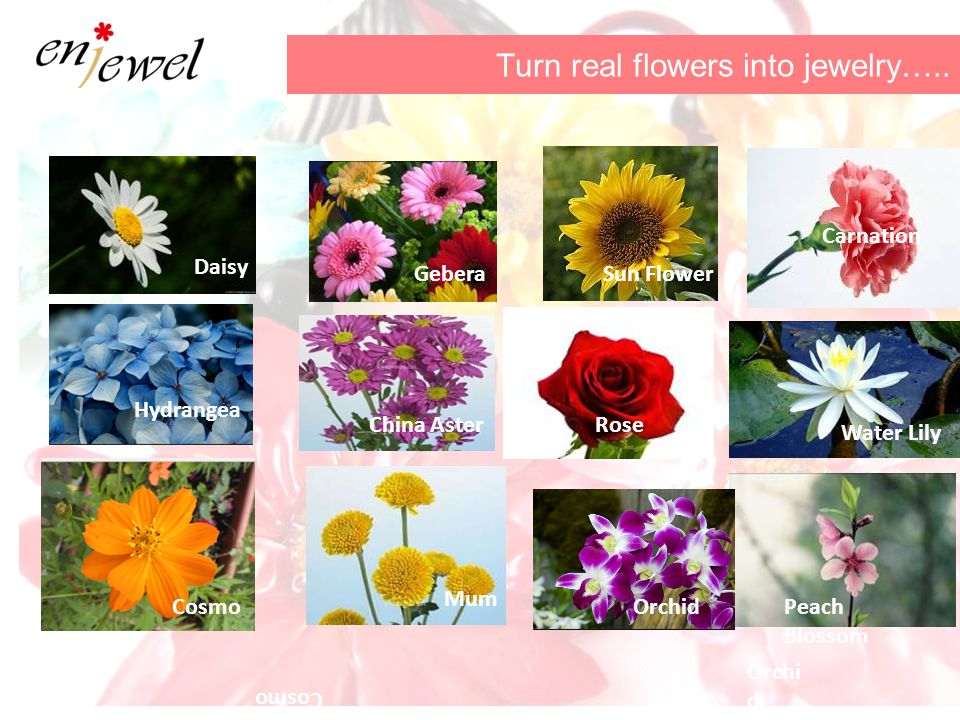 Turn real flowers into jewelry…..