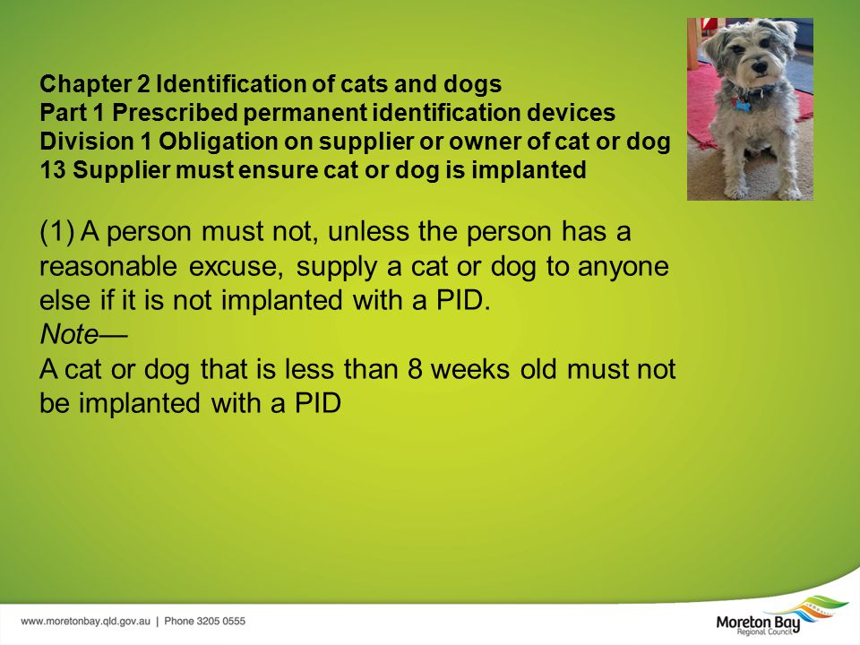 Chapter 2 Identification of cats and dogs Part 1 Prescribed permanent identification devices Division 1 Obligation on supplier or owner of cat or dog 13 Supplier must ensure cat or dog is implanted (1) A person must not, unless the person has a reasonable excuse, supply a cat or dog to anyone else if it is not implanted with a PID.
