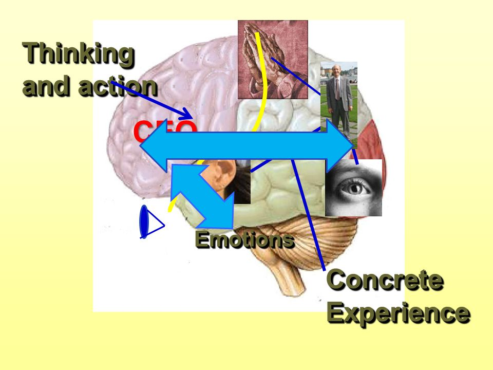 Thinking and action Concrete Experience EmotionsEmotions CEO