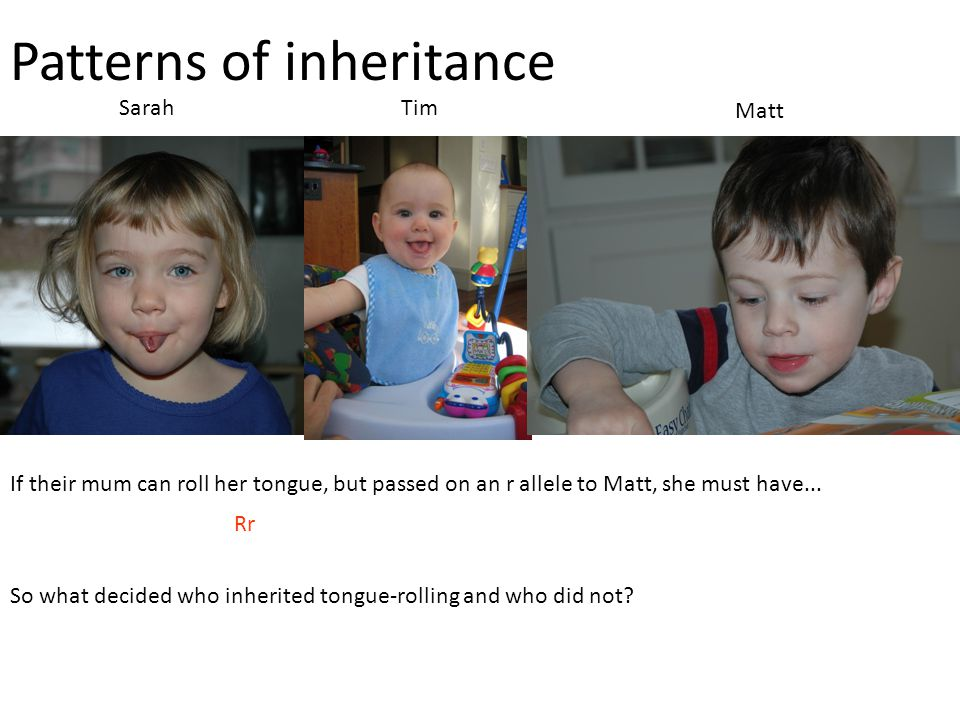 Patterns of inheritance SarahTim Matt If their mum can roll her tongue, but passed on an r allele to Matt, she must have... Rr So what decided who inh