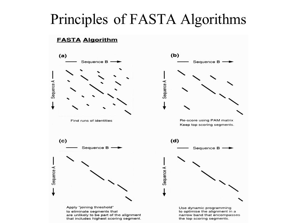 Database scanning Approximation Algorithms BLAST Heuristic method to find the highest scoring Locally optimal alignments Allow multiple hits to the same sequence Based on statistics of ungapped sequence alignments The statistics allow the probability of obtaining an ungapped alignment MSP - Maximal Segment Pair above cut-off All world (k > 3) score grater than T Extend the score both side Use dynamic programming for narrow region
