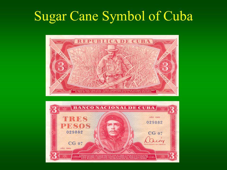 Sugar Cane Symbol of Cuba Geldschein mit Che einfügen