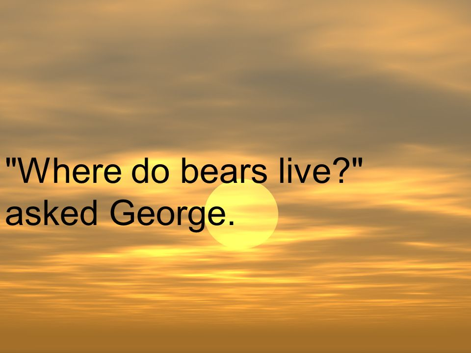 Where do bears live asked George.