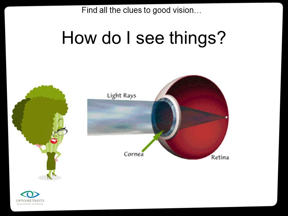 How do I see things? Find all the clues to good vision…