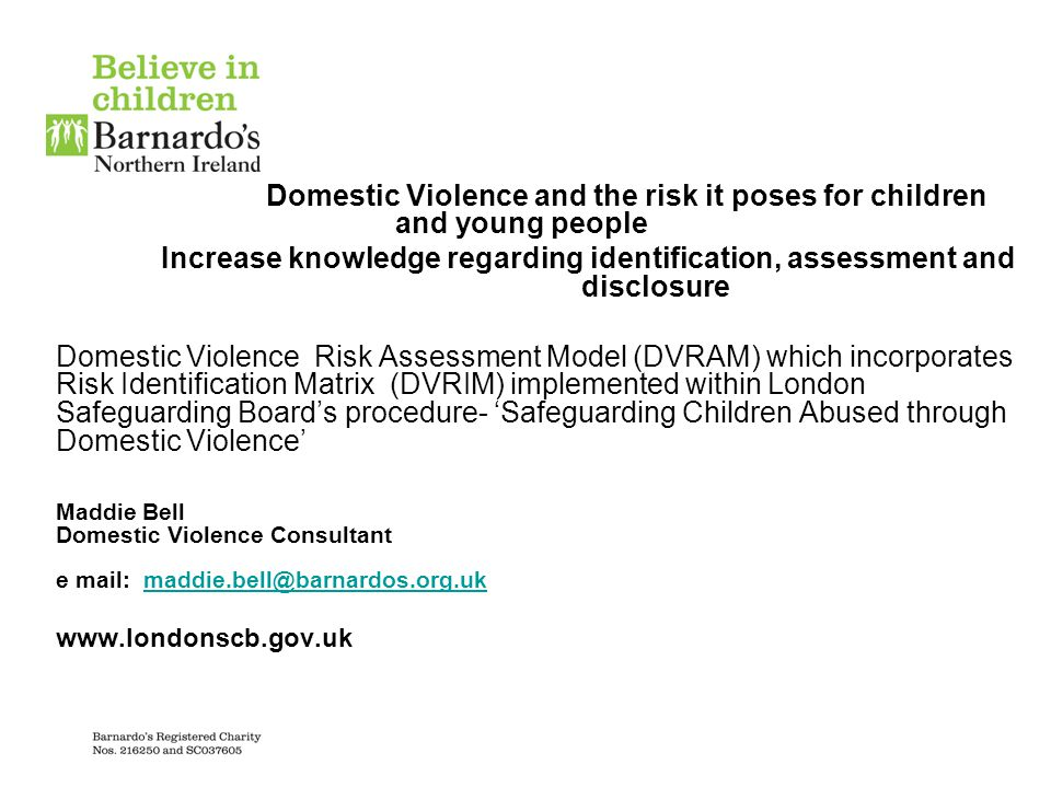 Barnardo's Domestic Violence Risk Assessment Model (DVRAM) which has developed DVRIM - Domestic Violence Risk Identification Matrix Background: Adapted from a manual produced by the Ontario Ministry of Community and Social Services in Canada Piloted with Social Care Trusts in Northern Ireland over a 5 year period supported by the Domestic Violence Regional Steering Group-Support for Children's Evaluated by Martin Calder (London and NI.)