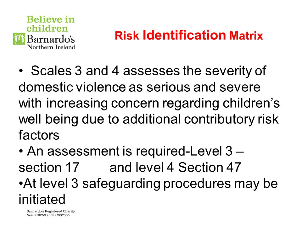 Risk Identification Matrix Scales 3 and 4 assesses the severity of domestic violence as serious and severe with increasing concern regarding children'
