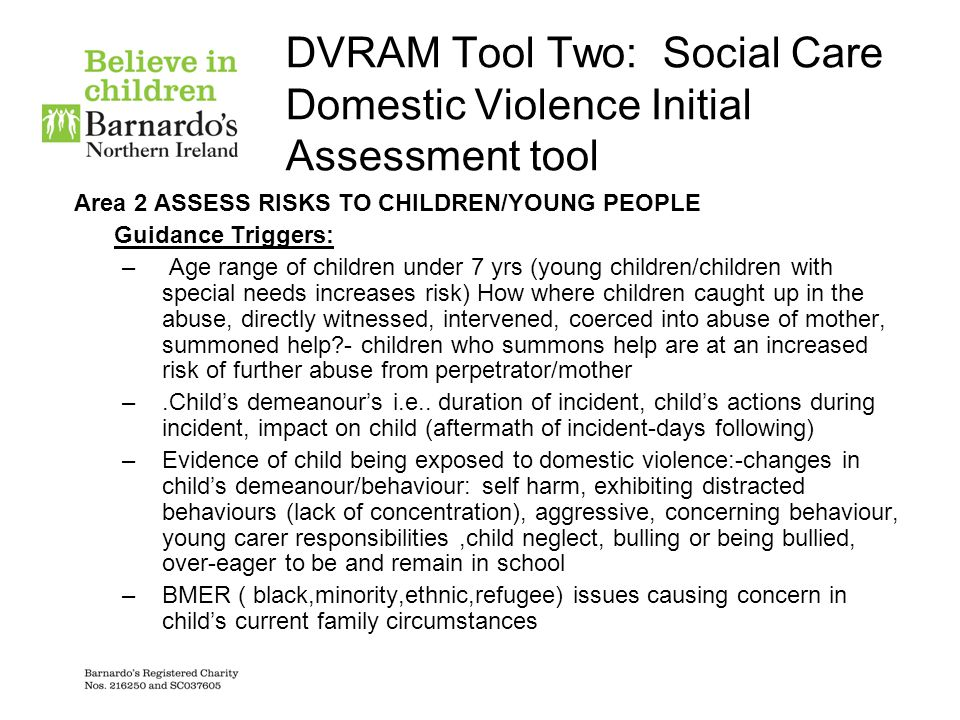 DVRAM Tool Two: Social Care Domestic Violence Initial Assessment tool Area 2 ASSESS RISKS TO CHILDREN/YOUNG PEOPLE Guidance Triggers: – Age range of c