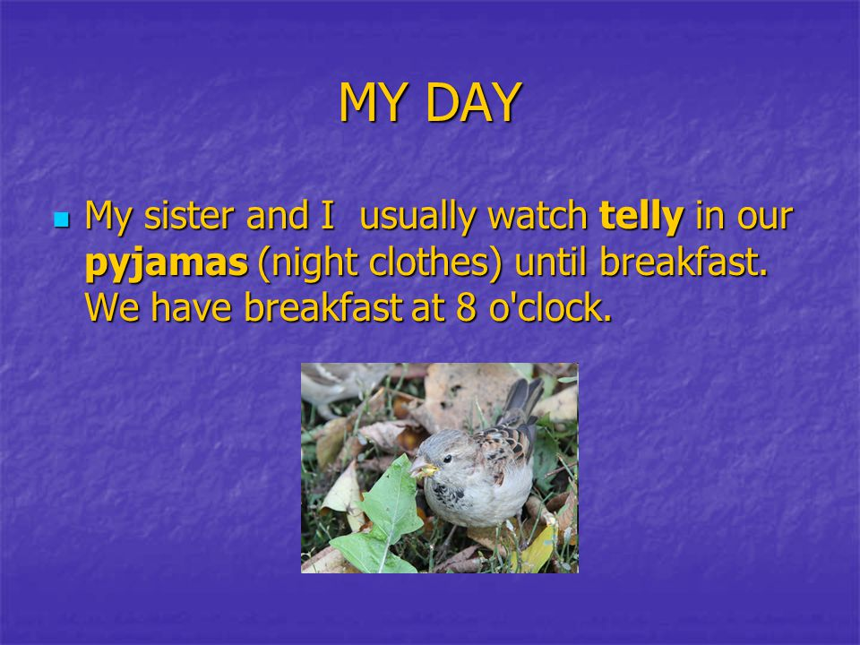 MY DAY My sister and I usually watch telly in our pyjamas (night clothes) until breakfast.