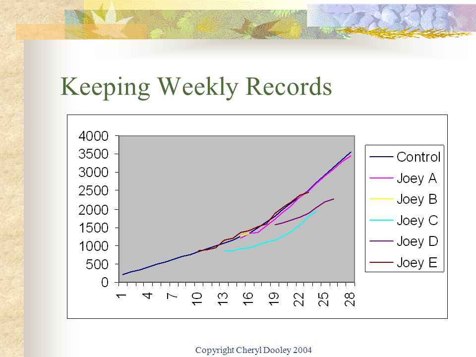 Copyright Cheryl Dooley 2004 Keeping Weekly Records