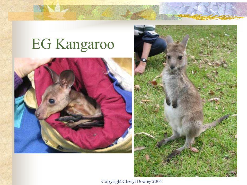 Copyright Cheryl Dooley 2004 EG Kangaroo