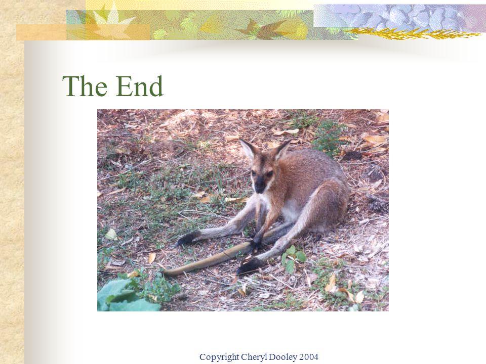 Copyright Cheryl Dooley 2004 The End