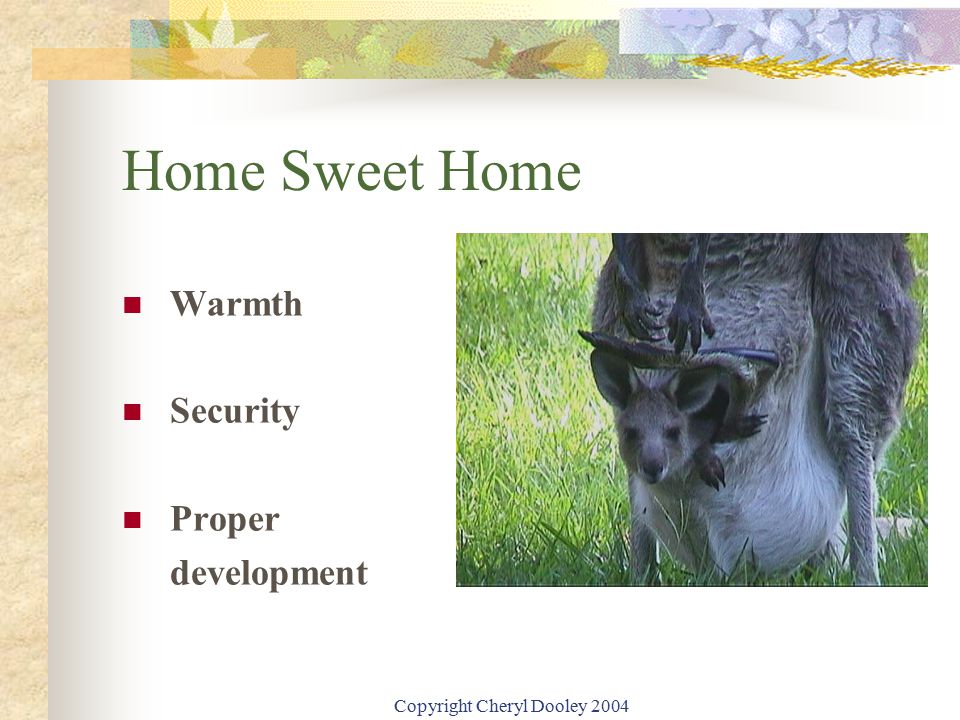Copyright Cheryl Dooley 2004 Home Sweet Home Warmth Security Proper development