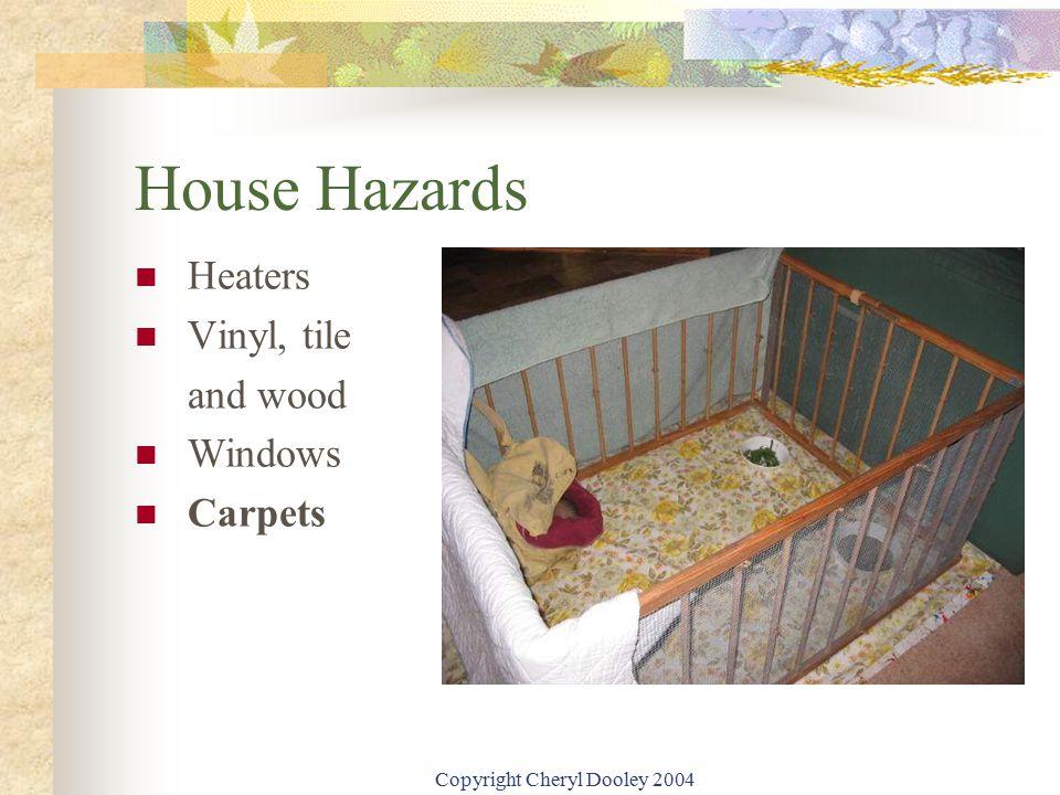 Copyright Cheryl Dooley 2004 House Hazards Heaters Vinyl, tile and wood Windows Carpets
