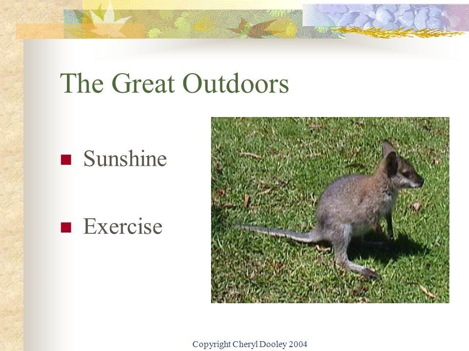 Copyright Cheryl Dooley 2004 The Great Outdoors Sunshine Exercise