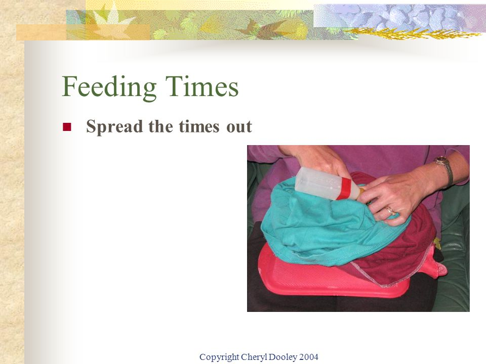 Copyright Cheryl Dooley 2004 Feeding Times Spread the times out