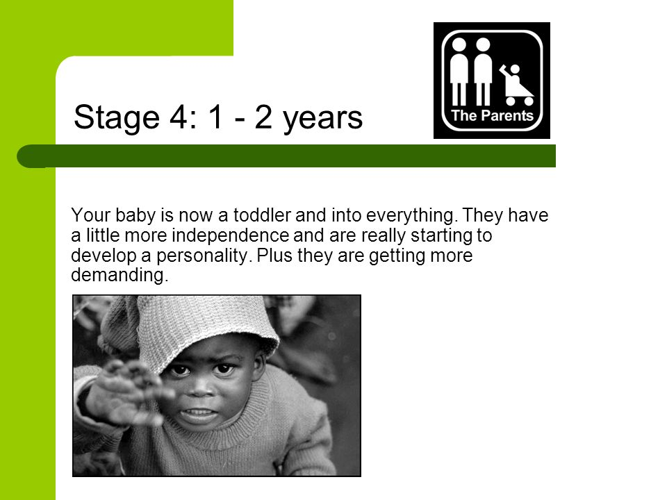 Stage 4: 1 - 2 years Your baby is now a toddler and into everything.