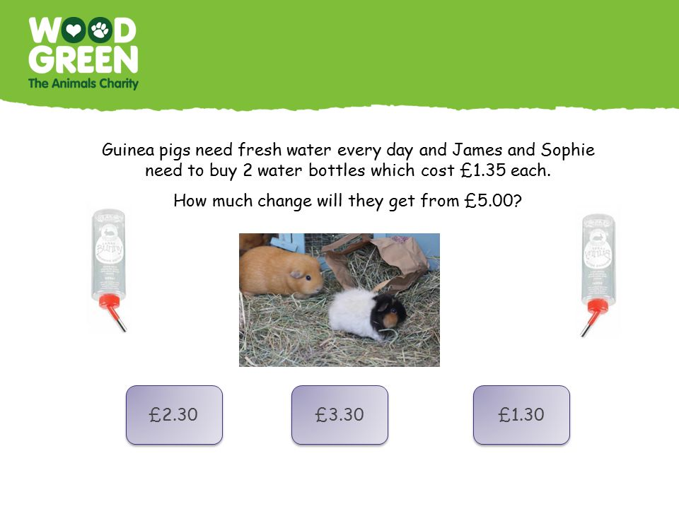 Guinea pigs need fresh water every day and James and Sophie need to buy 2 water bottles which cost £1.35 each. How much change will they get from £5.0