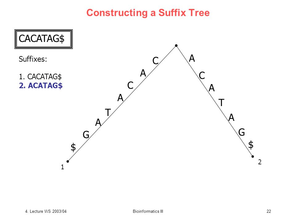 4. Lecture WS 2003/04Bioinformatics III22 Constructing a Suffix Tree CACATAG$ Suffixes: 1.