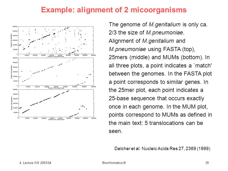 4. Lecture WS 2003/04Bioinformatics III39 Example: alignment of 2 micoorganisms Delcher et al.