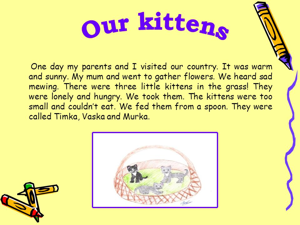One day my parents and I visited our country. It was warm and sunny. My mum and went to gather flowers. We heard sad mewing. There were three little k