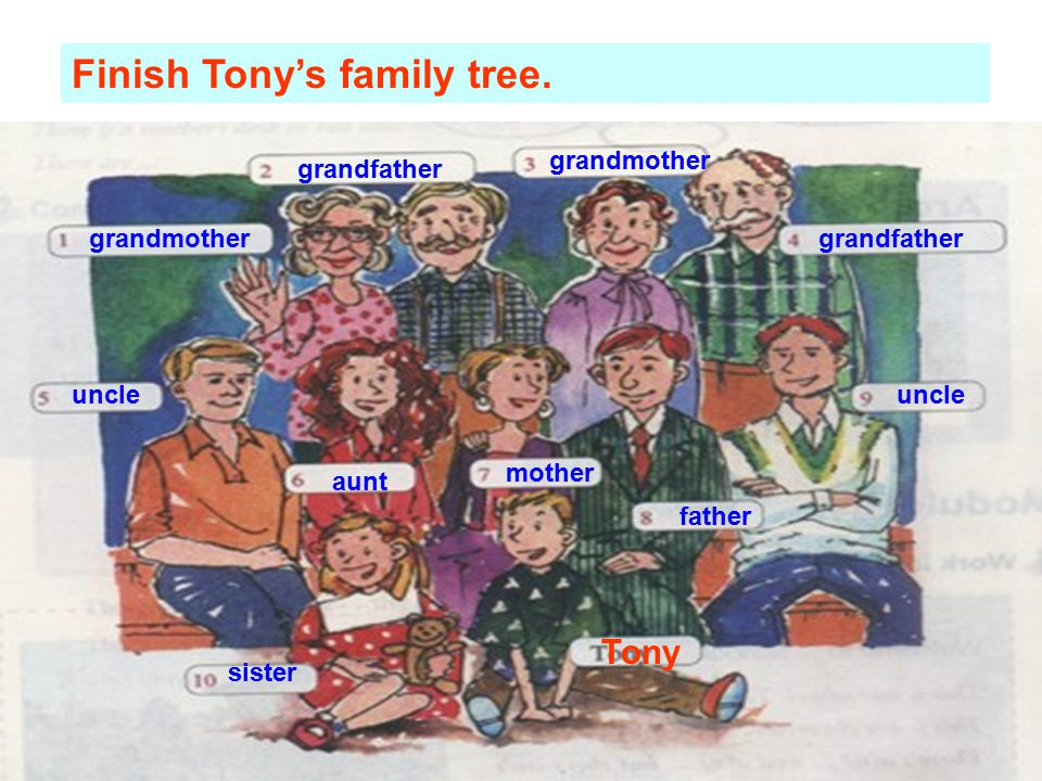 Finish Tony's family tree. grandmother grandfather uncle aunt mother father sister Tony