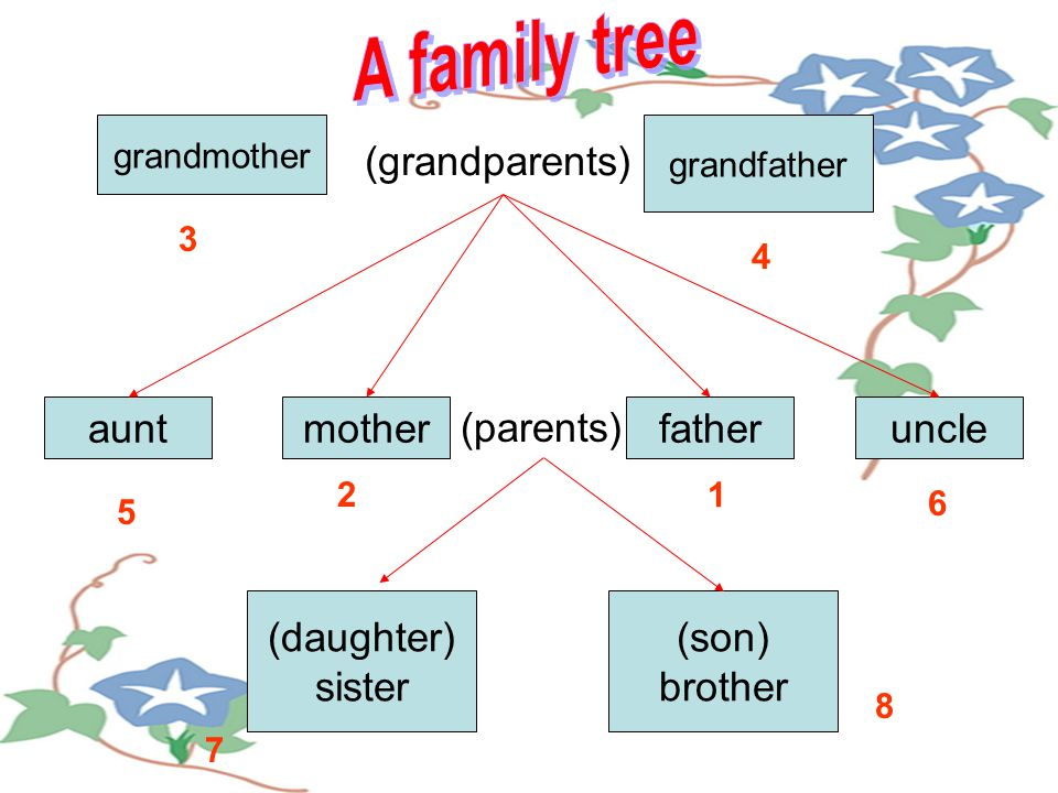 grandmother grandfather auntmotherfatheruncle (daughter) sister (son) brother (grandparents) (parents) 1 2 3 4 5 6 7 8
