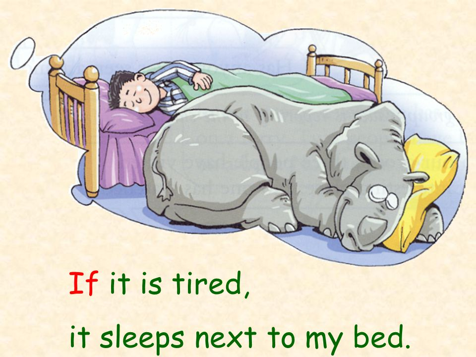 If it is tired, it sleeps next to my bed.