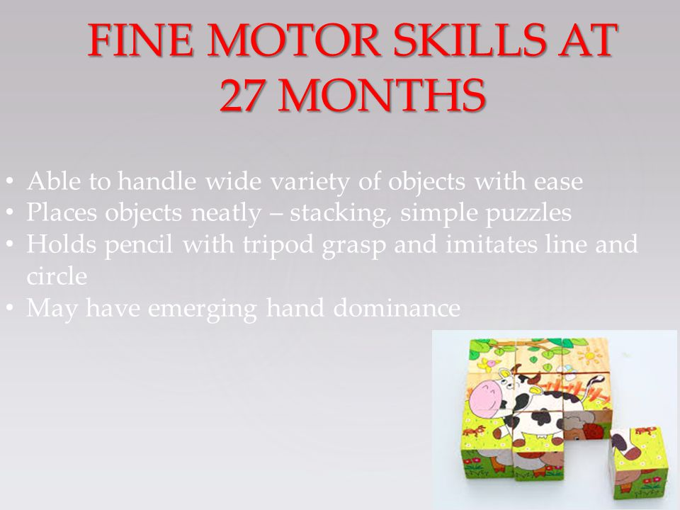 Able to handle wide variety of objects with ease Places objects neatly – stacking, simple puzzles Holds pencil with tripod grasp and imitates line and circle May have emerging hand dominance FINE MOTOR SKILLS AT 27 MONTHS
