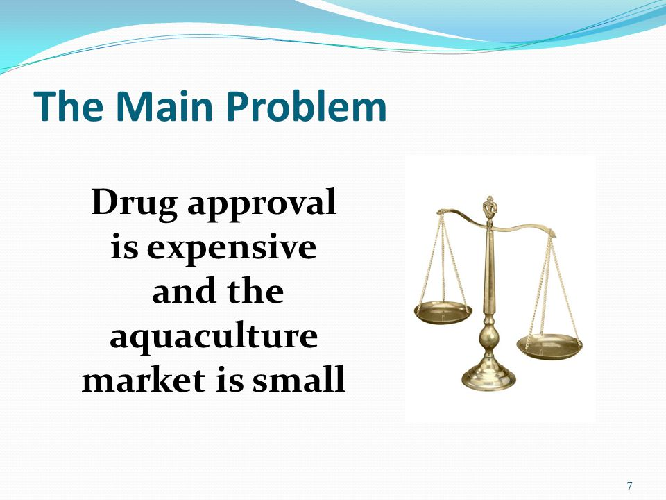 The Main Problem Drug approval is expensive and the aquaculture market is small 7