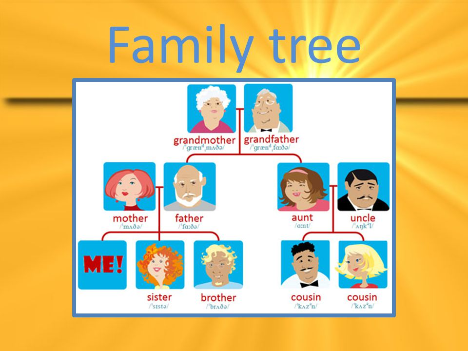 THE MEMBERS OF THE FAMILY ARE: mother, father, sister, brother, baby and dog.