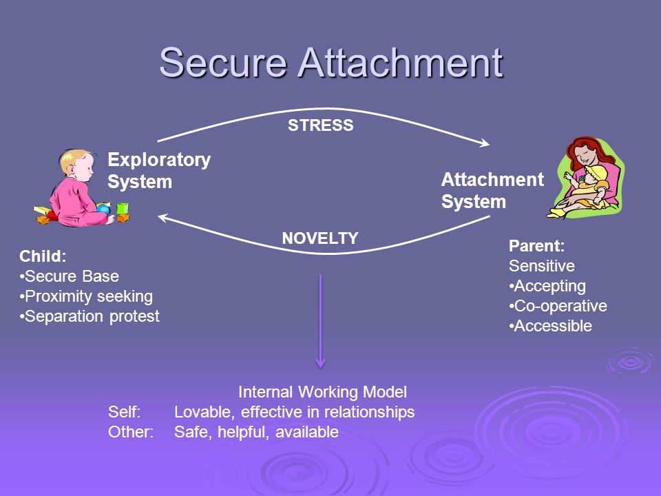 Secure Attachment NOVELTY Exploratory System STRESS Attachment System Internal Working Model Self: Lovable, effective in relationships Other: Safe, he