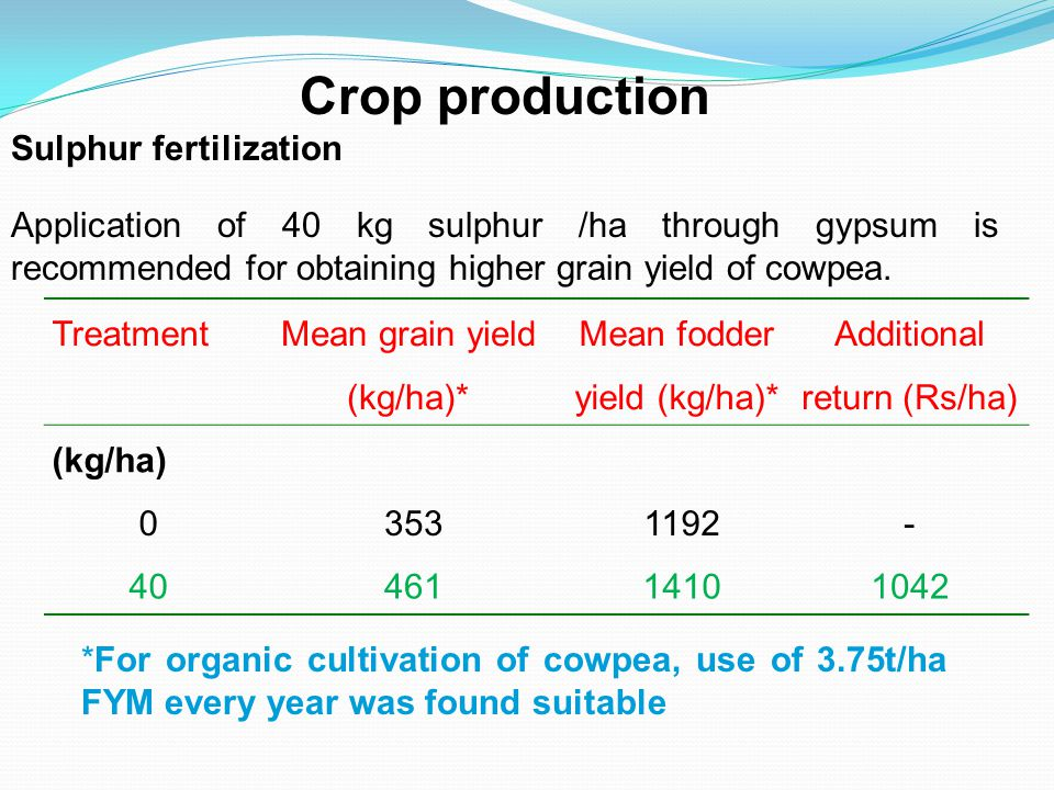 Treatment Mean grain yield (kg/ha)* Mean fodder yield (kg/ha)* Additional return (Rs/ha) (kg/ha) 03531192- 4046114101042 Crop production Sulphur fertilization Application of 40 kg sulphur /ha through gypsum is recommended for obtaining higher grain yield of cowpea.