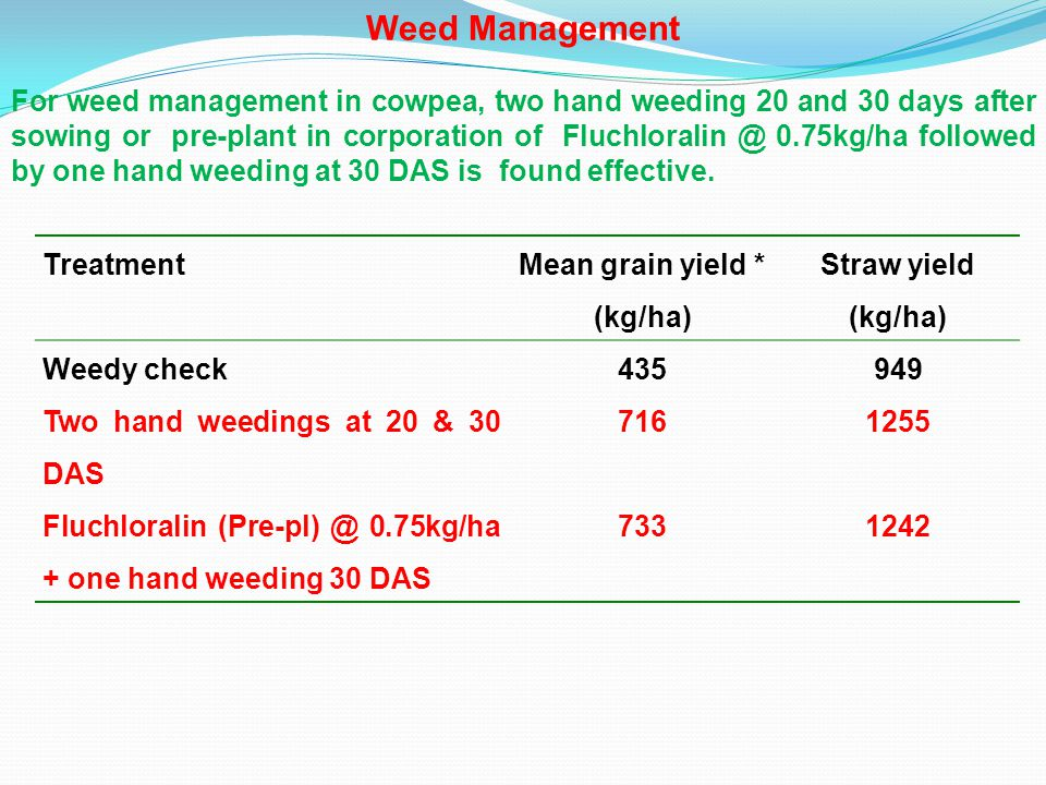 TreatmentJassid population reduction (% ) White flies reduction (% ) Mean seed yield* (kg/ha) Net return (Rs/ha) Control8.395.98717- Methyl parathion 2% (25 kg/ha) 82.880.6413551870 Protection Technologies Management of jassid, pod borer and whitefly On appearance of insects in cowpea, dusting of Methyl parathion 2% dust at 25kg/ha is economical.