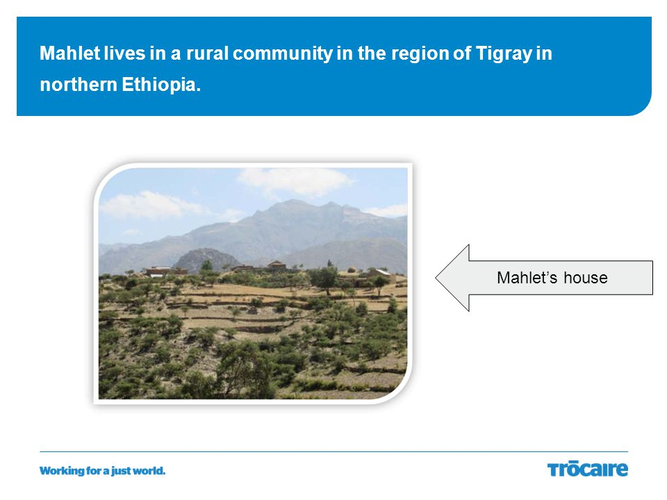 Mahlet lives in a rural community in the region of Tigray in northern Ethiopia. Mahlet's house