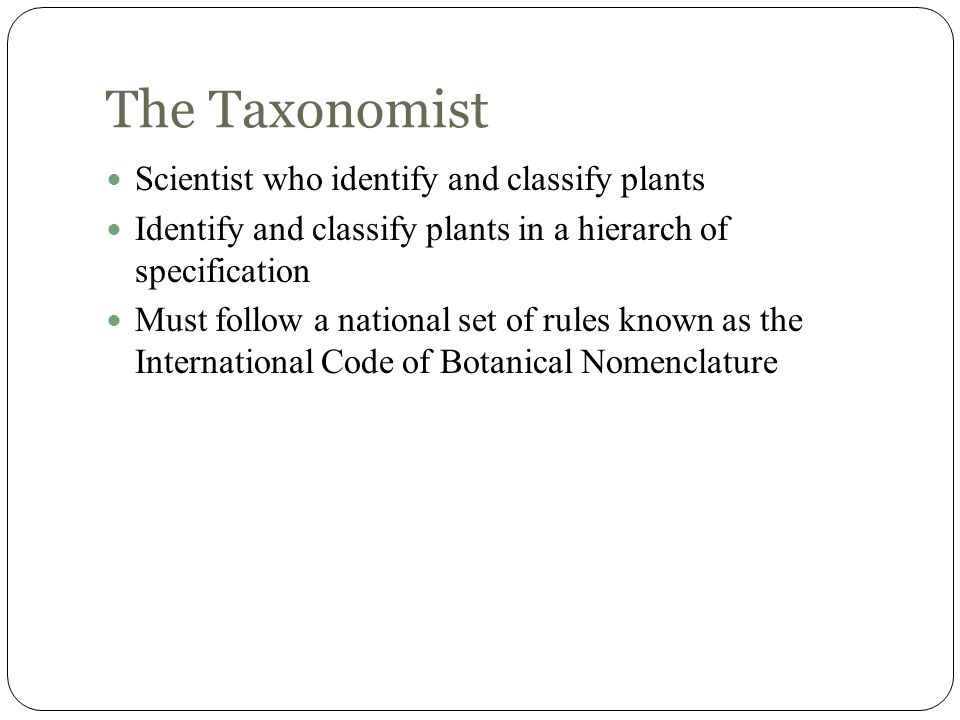 The Taxonomist Scientist who identify and classify plants Identify and classify plants in a hierarch of specification Must follow a national set of ru