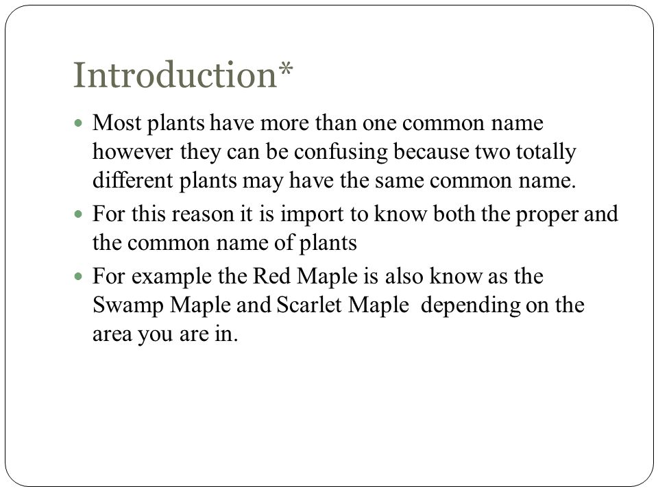Introduction* Most plants have more than one common name however they can be confusing because two totally different plants may have the same common n
