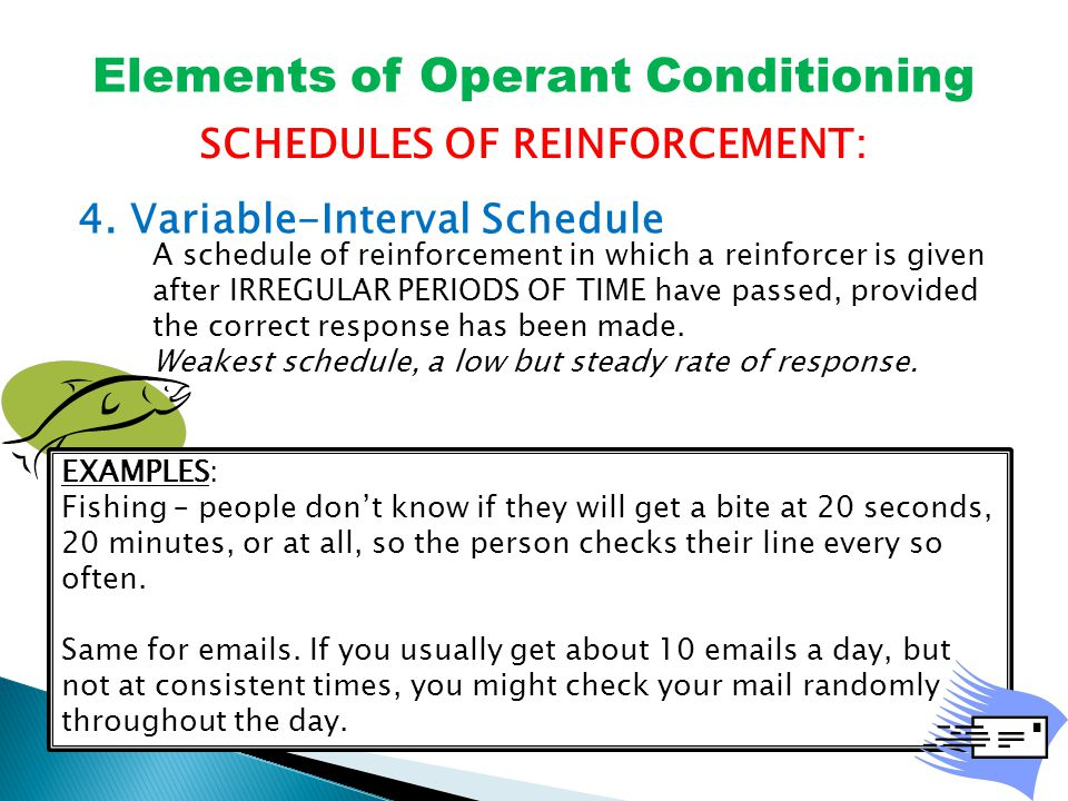 Elements of Operant Conditioning SCHEDULES OF REINFORCEMENT: 4.
