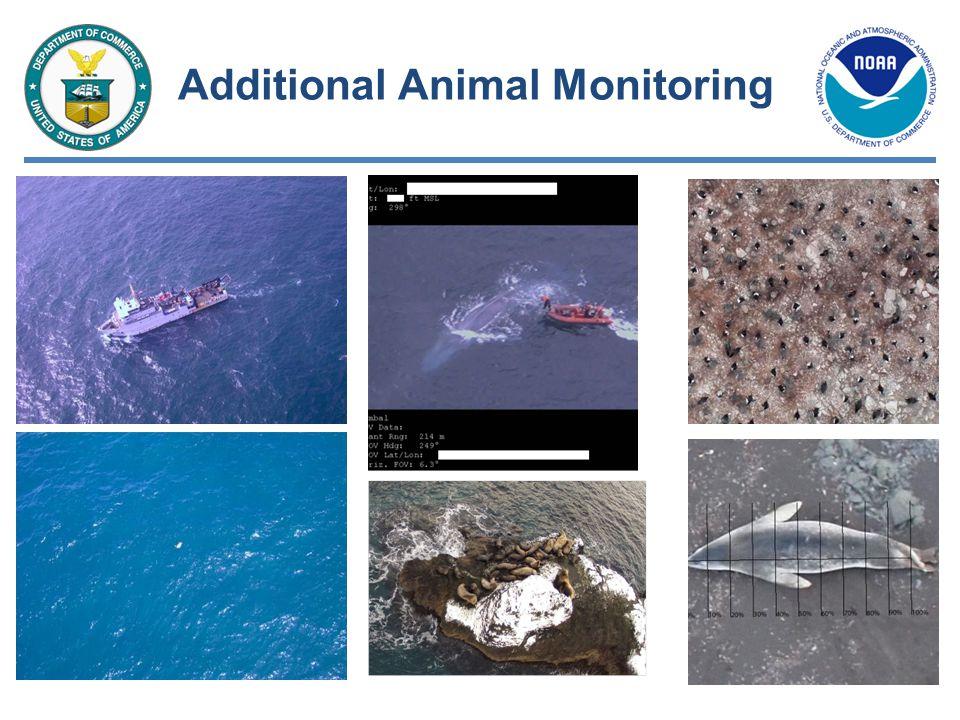 Additional Animal Monitoring