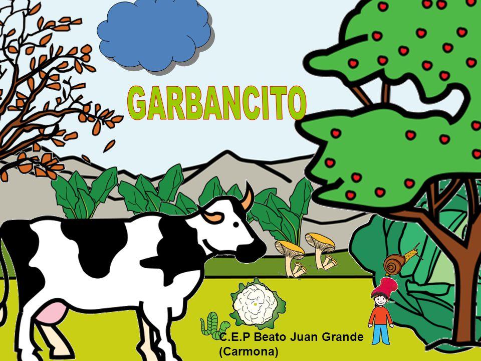 C.E.P Beato Juan Grande (Carmona)