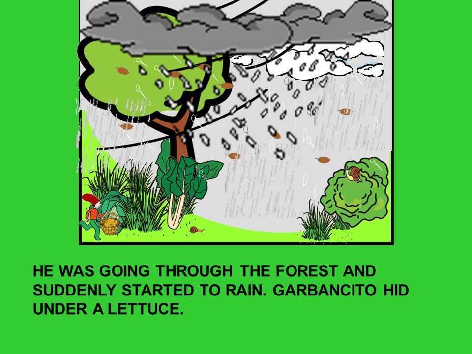 HE WAS GOING THROUGH THE FOREST AND SUDDENLY STARTED TO RAIN. GARBANCITO HID UNDER A LETTUCE.