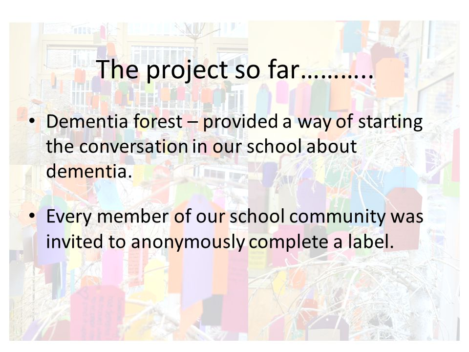 Dementia forest – provided a way of starting the conversation in our school about dementia.