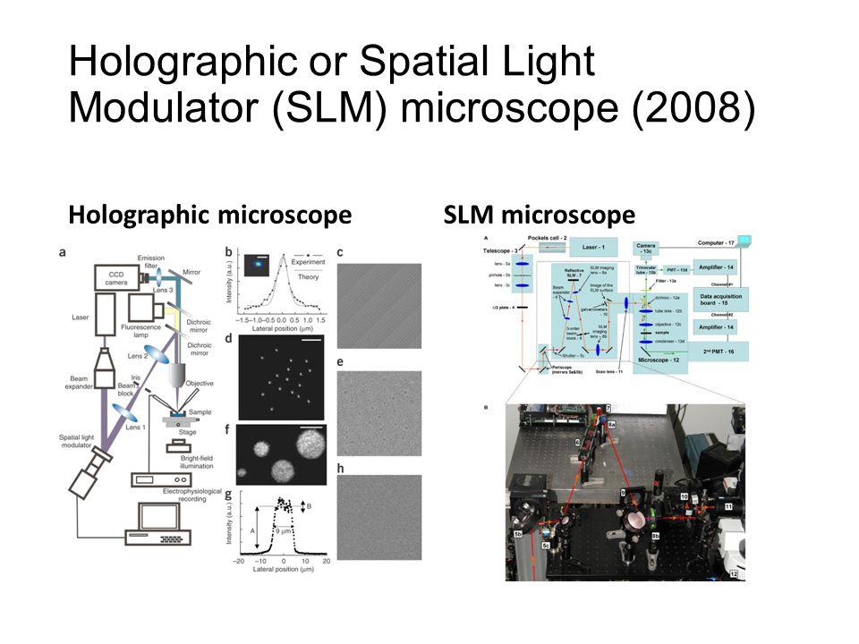 Holographic or Spatial Light Modulator (SLM) microscope (2008) Holographic microscopeSLM microscope