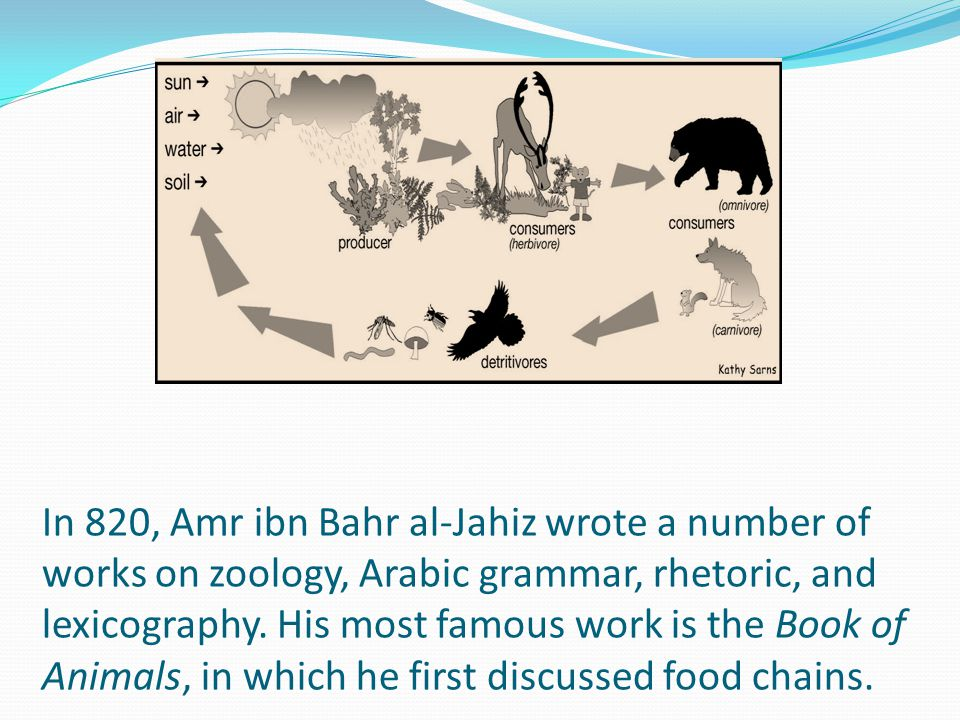 In 820, Amr ibn Bahr al-Jahiz wrote a number of works on zoology, Arabic grammar, rhetoric, and lexicography. His most famous work is the Book of Anim