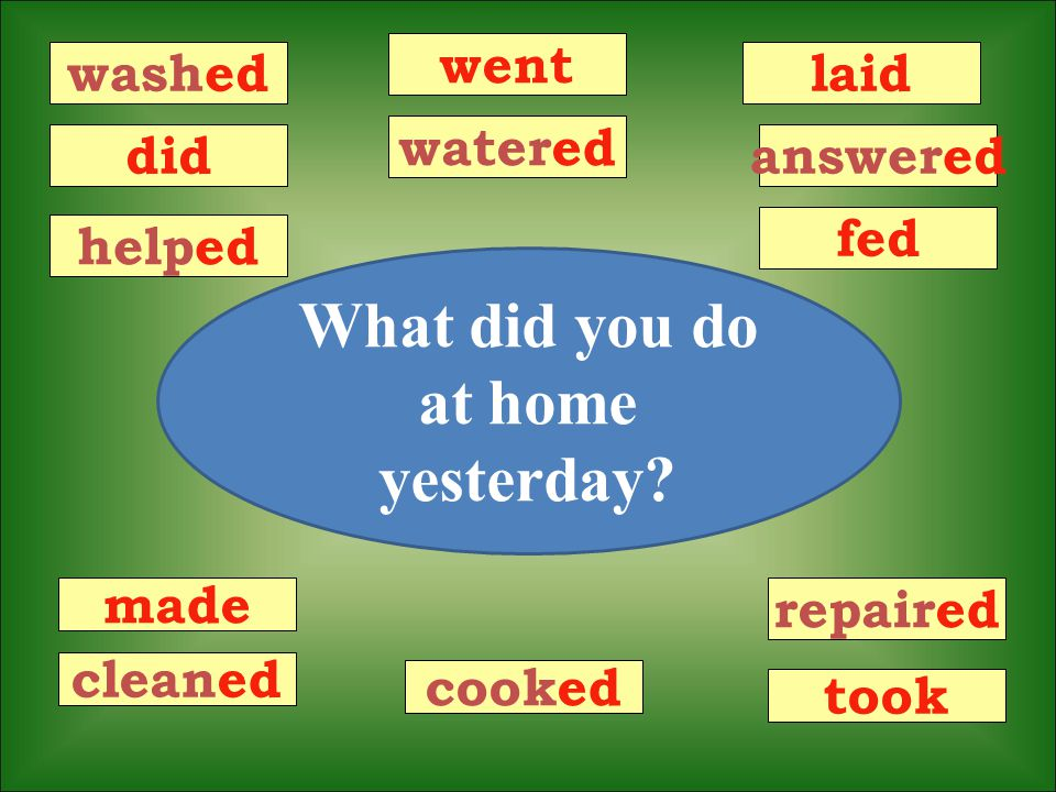 washed did helped went repaired made cleaned laid answered fed watered cooked took What did you do at home yesterday?
