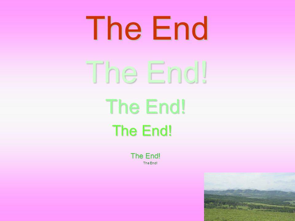 The End The End! The End! The End!